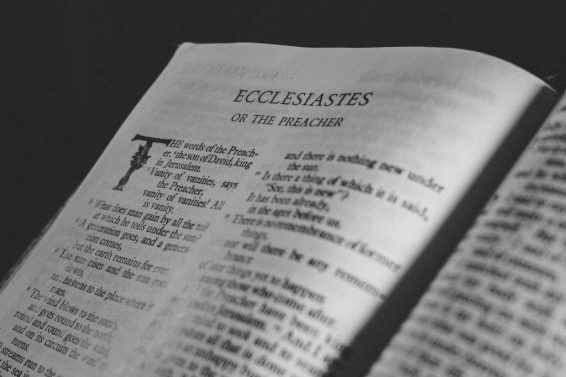 36-James-coleman-Ecclesiaste-1024×683-1